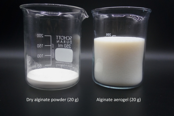 Zwei Bechergläser, eines mit trockenem Alginat-Pulver und eines mit Alginat-Aerogel